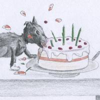 Naseweiss & die Torte