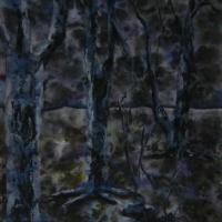 Nachtwald im Winter