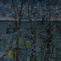 Nachtwald im Wasser